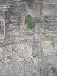 Taughannock Wall