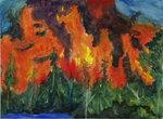 Colorado Lake Fire
