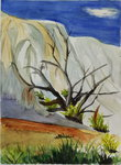 Orange Mound Snag - Mammoth Hot Springs