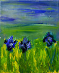 Wild Iris   >SOLD<